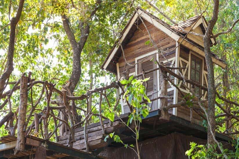 Ein Garten Fur Kinder Baumhaus Selber Bauen So Geht S