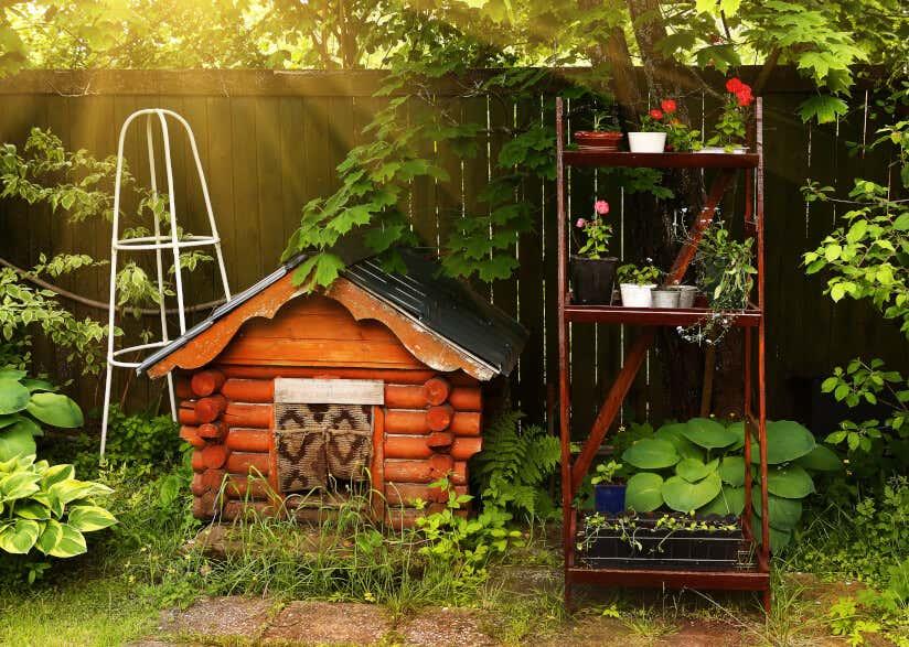 hundeh tte f r drau en worauf sie beim kauf achten sollten. Black Bedroom Furniture Sets. Home Design Ideas